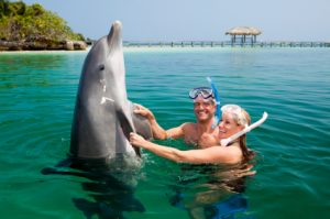 Happy mid adult couple wearing snorkels and playing with dolphin in sea